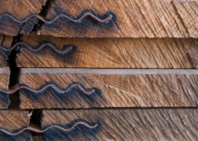 Noble madera - Egur jatorra